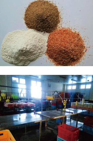 国産野菜の乾燥加工事業・野菜パウダー
